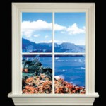 88701-H Window Lite w Hawaii View