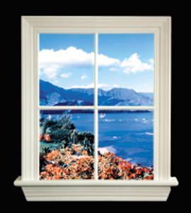 hawaii viewfor window liteview only biobrite inc