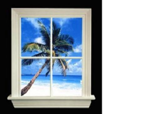 ADD A WINDOW TO ANY ROOM